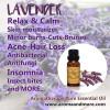 Lavender HA Organic...