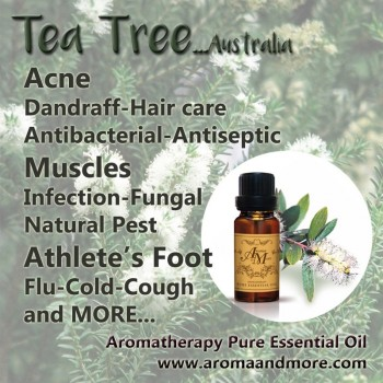 "Tea Tree ""Select""..."