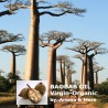 Baobab Oil Virgin -...