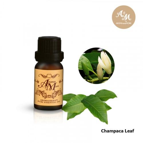 Champaca Leaf (Michelia...