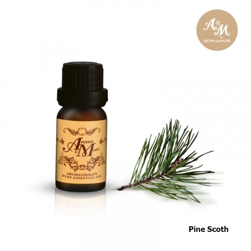 Pine (Scotch Pine)...