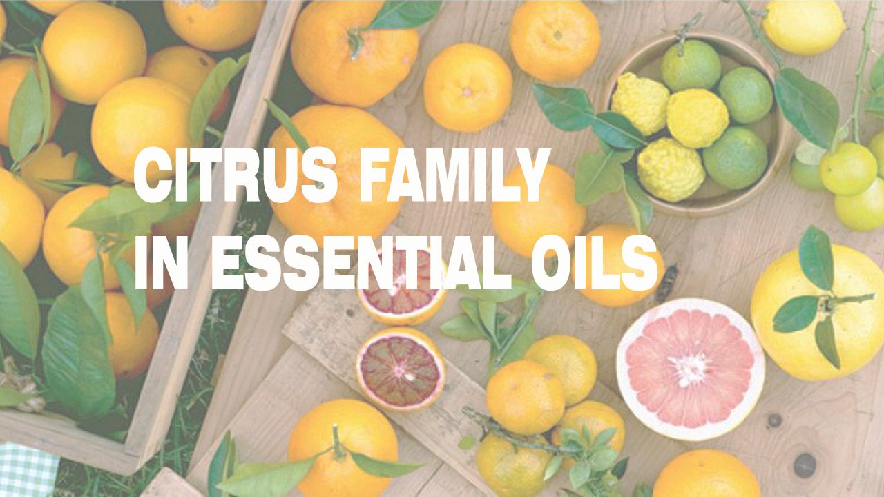 Aromatherapy WITH  Citrus Family Oils